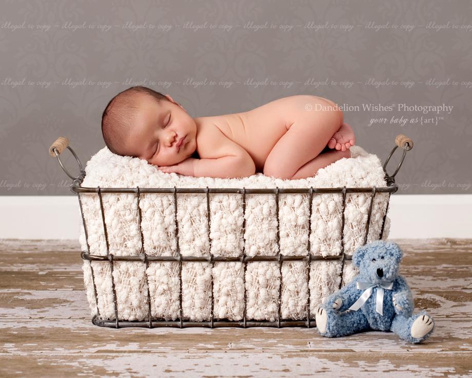 Newborn Photographer Loudoun County, VA
