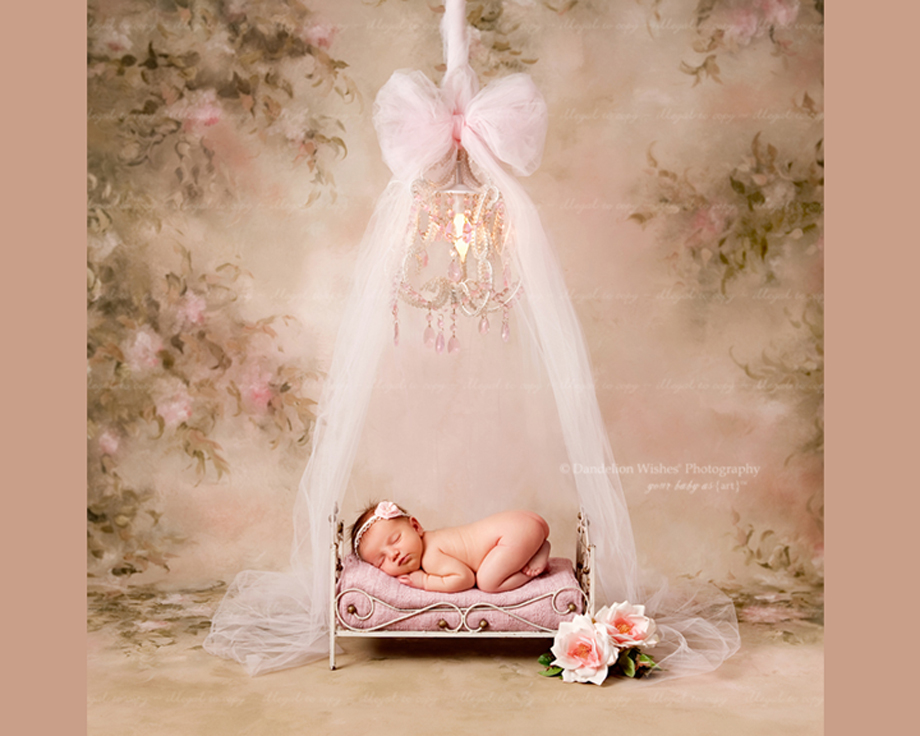 Newborn baby Photography near Ashburn VA