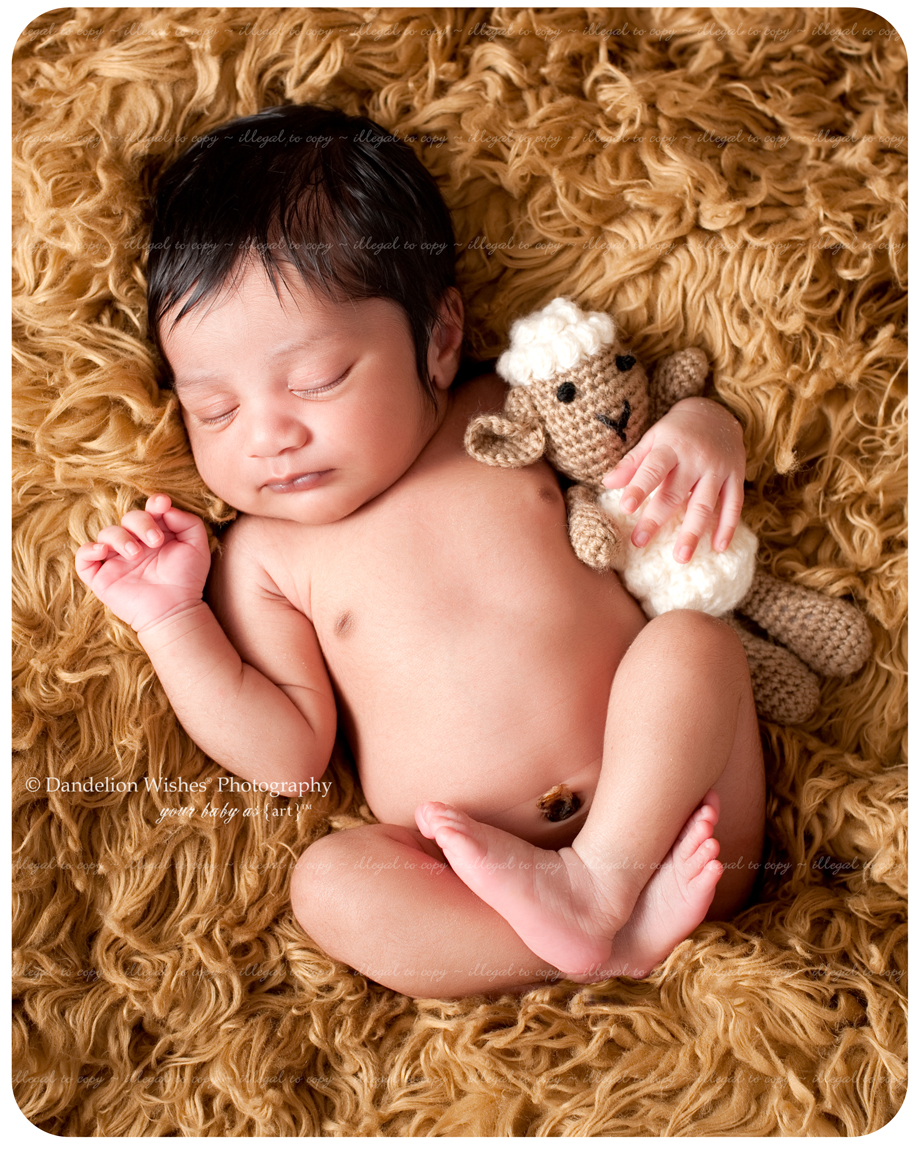 Newborn Baby Photographer, Herndon, VA