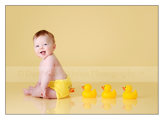 Baby Portrait Photographer Northern Virginia