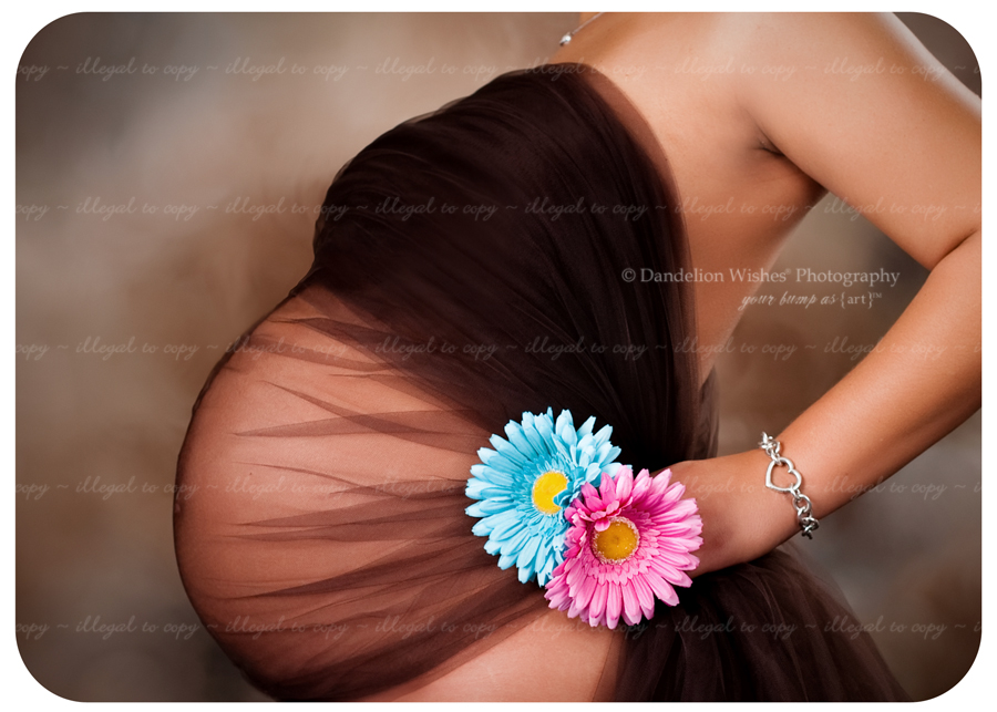 Expecting Twins Pregnancy & Maternity photos near Charlottesville, VA 22901, 22902, 22903, 22904, 22905, 22906, 22907, 22908, 22909, 22910, 22911 ~ Portrait Studios near Albemarle Co. Virginia
