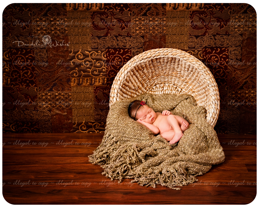 Artistic newborn photographer, close to Reston, VA in Northern Virginia