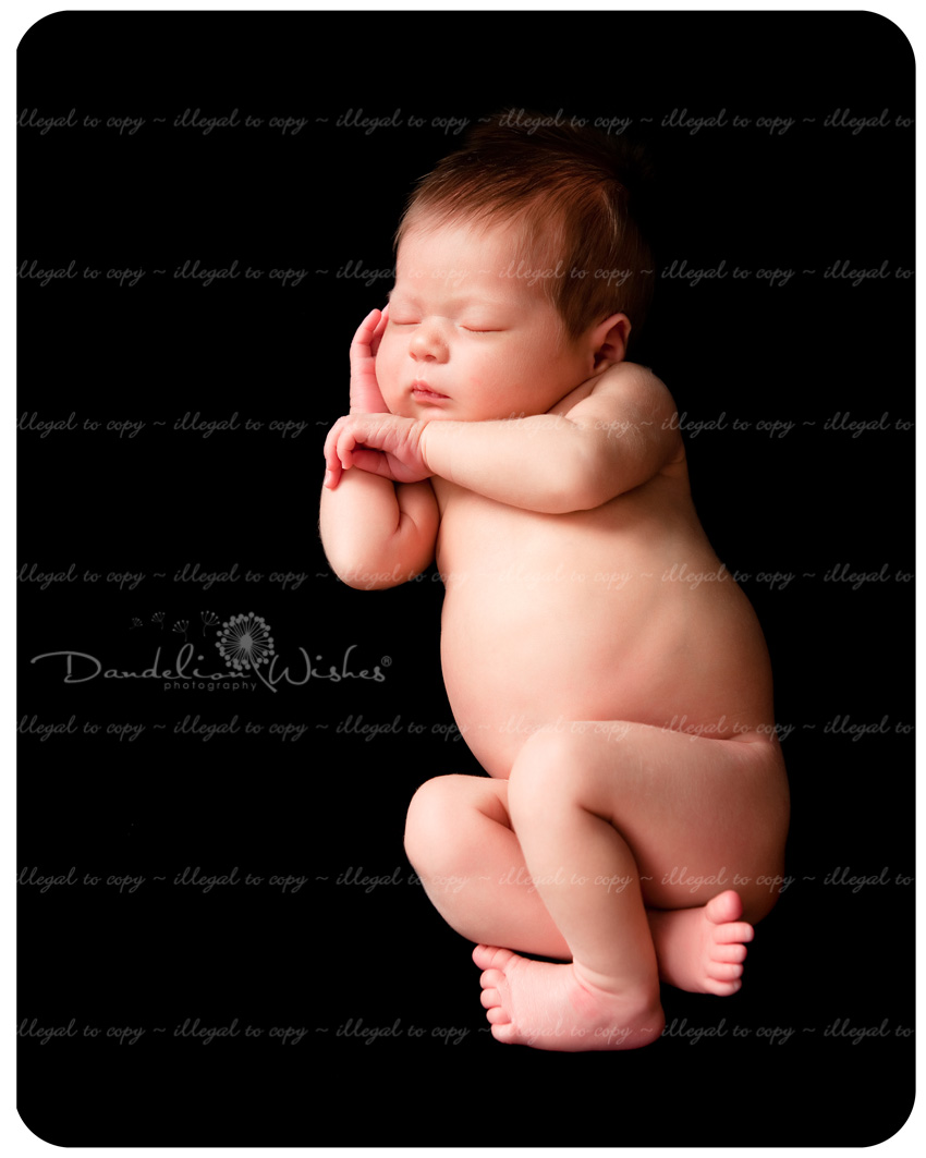 Newborn baby portrait studio near Reston, VA ~ Northern Virginia.