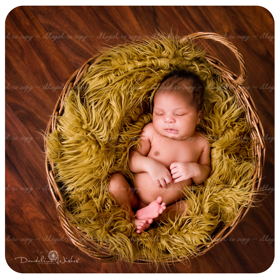 Premier newborn photographer to the greater Washington D.C. area. 