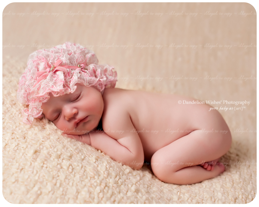 Newborn baby pictures near Alexandria, VA 22310,22309,22308,22306,22307 and 22314.