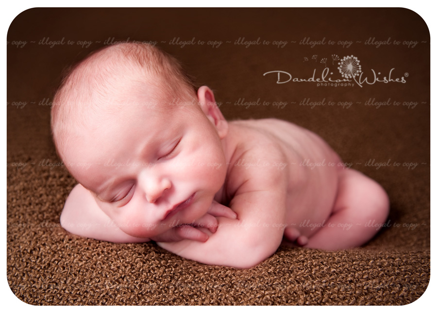 Best newborn photographer ~ near Brambleton, Virginia in Loudoun County, VA.