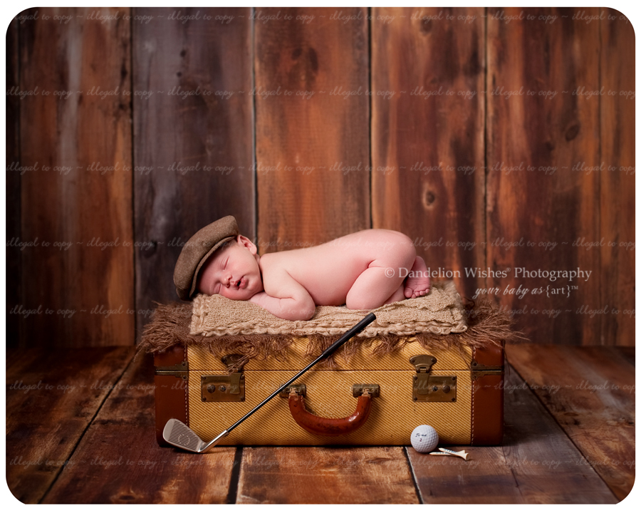 Exclusive Newborn Photographer ~ near Loudoun County Virginia, Ashburn, VA  20146, 20147, 20149 and 22093 - Brambleton VA 20148 area.