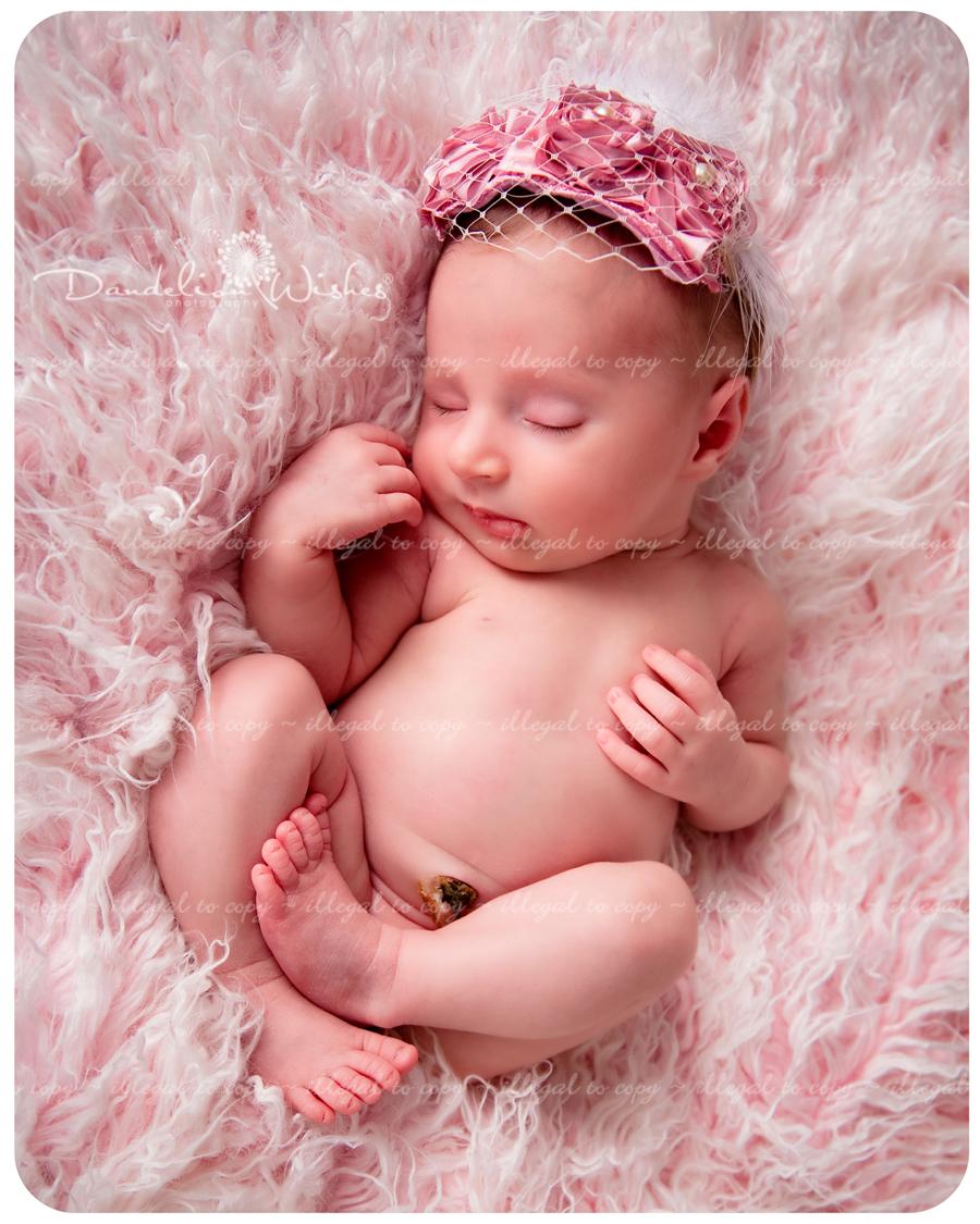 Top newborn photograph...