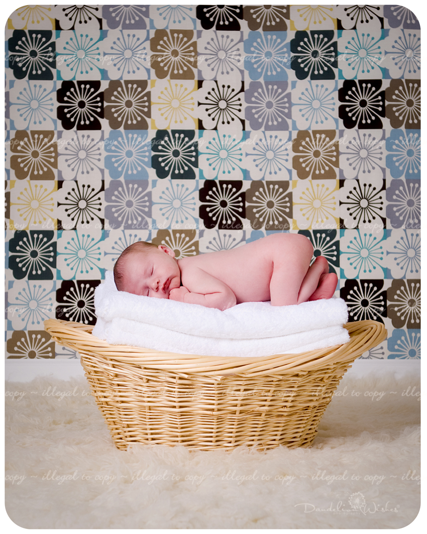 unique newborn photography near south riding virginia - the best in newborn photography.