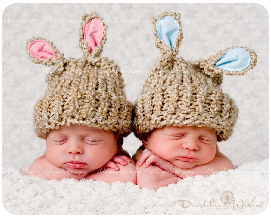 Newborn Twins   Photog...