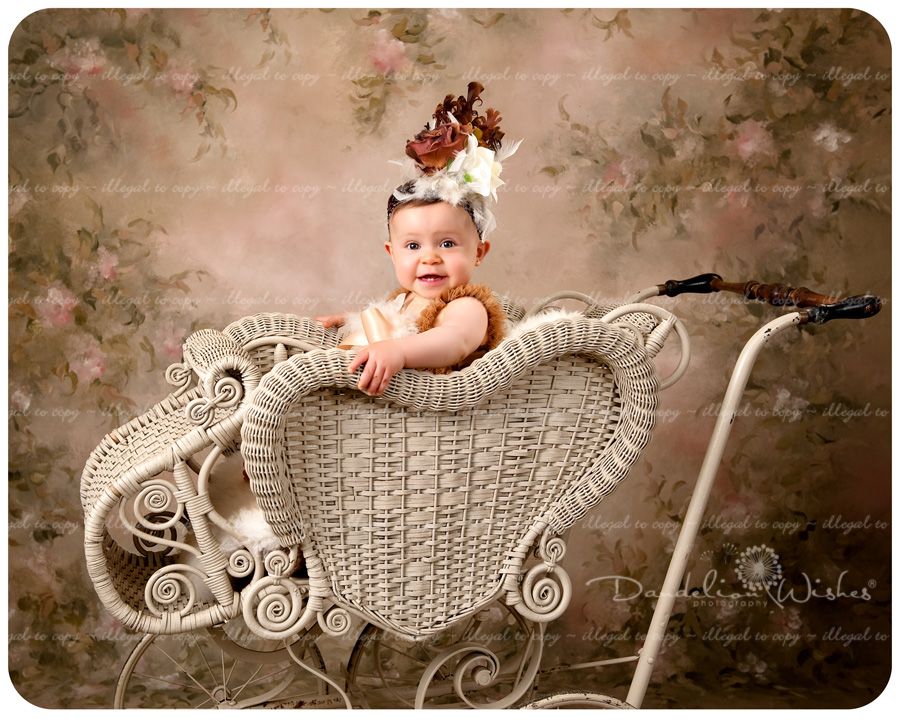 Babies 1st Birthday Photos ~ Top Baby Photo Studios ~ near Stafford County Virginia & Quantico VA 22135