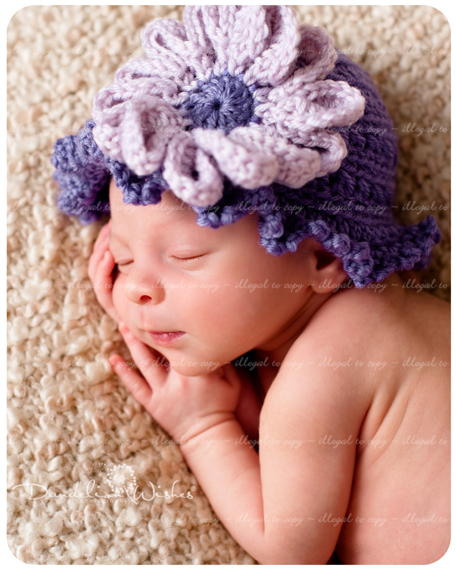 Top Baby Photo Studios ~ near Sterling Virginia, Dulles Virginia &amp; Great Falls Virginia area.