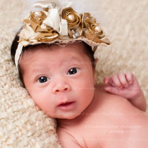 Newborn Photographer close to Alexandria VA, 22309, 22308, 22306, 22307 & 22314.