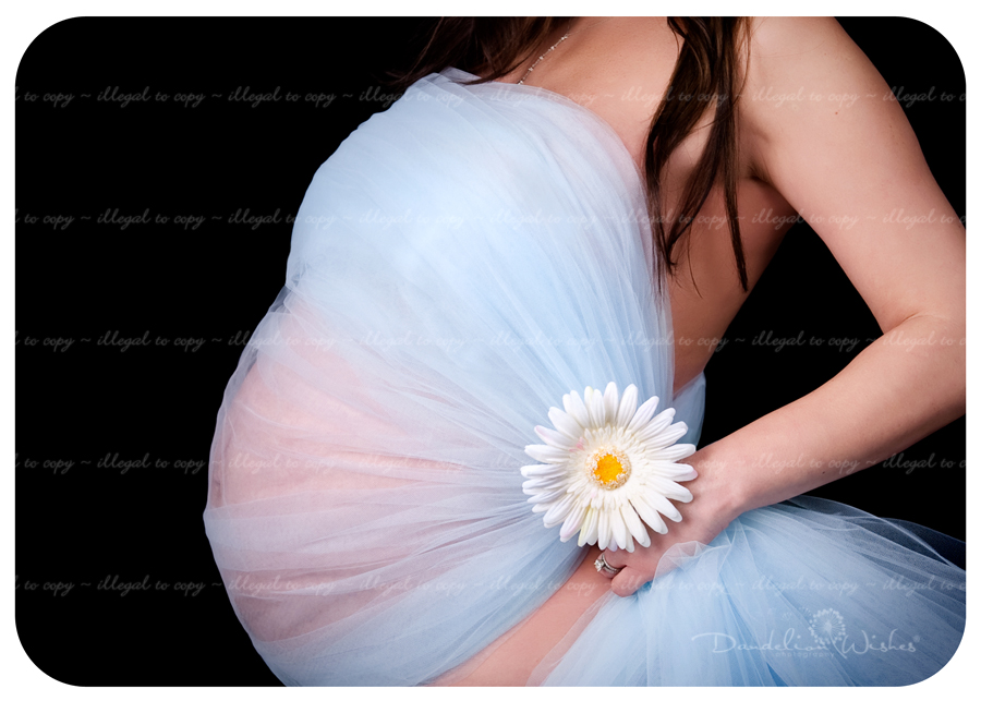 baby bump maternity portraits near Reston, Virginia 20190, 20191, 20194, 20195, 20196 & 22096.