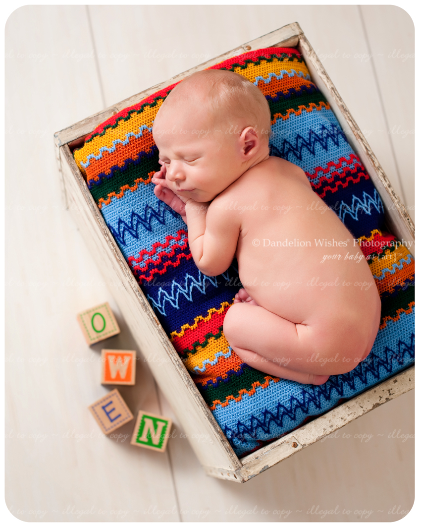 Best newborn photographer for unique newborn photography. Located in Northern Virginia.
