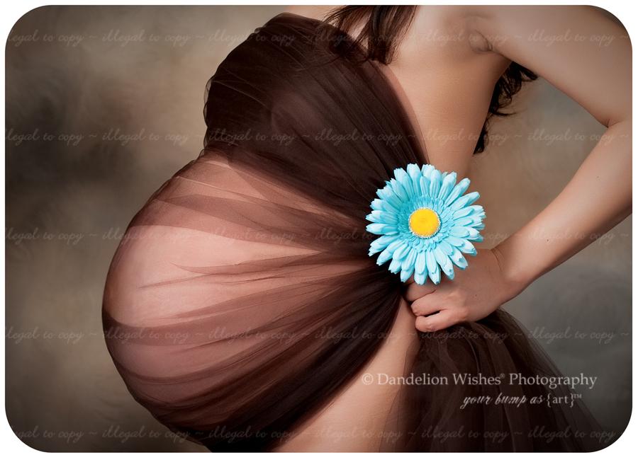 Maternity & Pregnancy pictures near Charlottesville, VA 22901, 22902, 22903, 22904, 22905, 22906, 22907, 22908, 22909, 22910, 22911 ~ Portrait Studios near Albemarle Co. Virginia