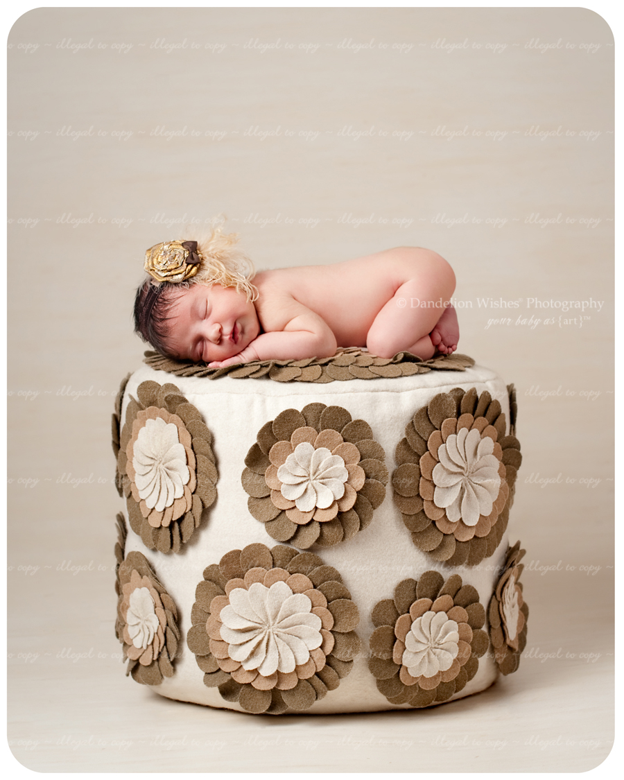 Best photographer specializing in brand new newborn photography...close to Falls Church, VA 22044,22040,22041,22042,22043,22046,22047
