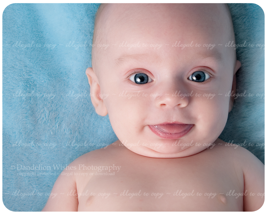 best baby portrait studio northern virginia