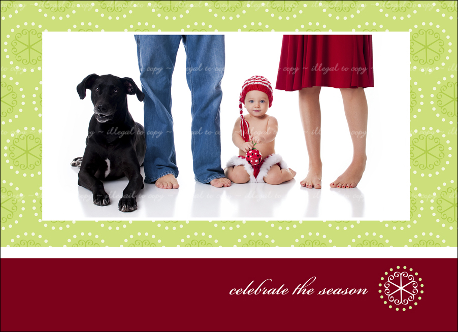 Unique And Artistic Christmas Holiday Cards Northern Virginia Professional Photographer