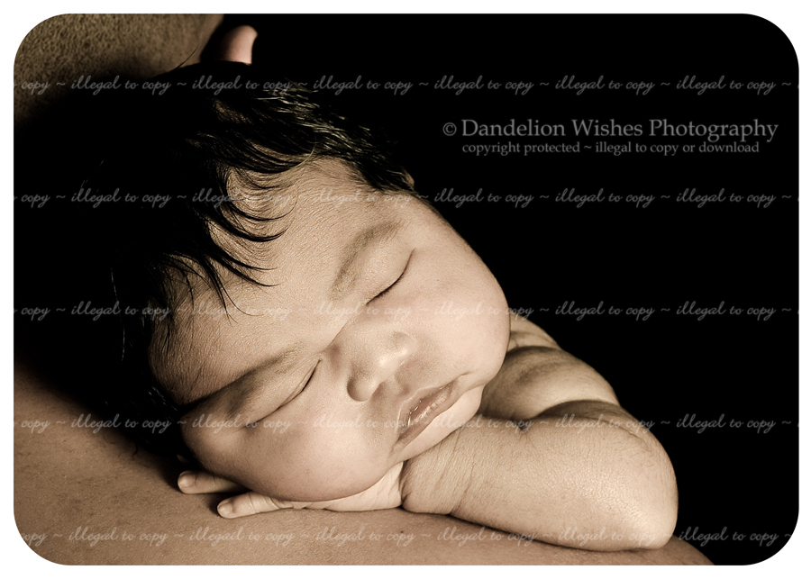 dad and baby photographer near loudoun county virginia