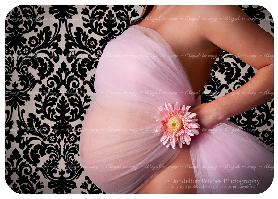 Gorgeous pregnancy pictures in the northern virginia washington dc metro area