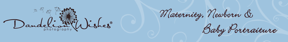 Dandelion Wishes® logo