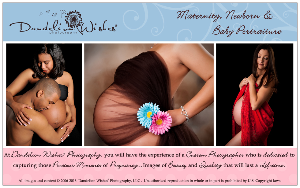 Maternity Photography,Maternity Photographer,Pregnancy Pictures,Pregnant Photos,Northern VA,Maryland,MD,Washington DC,Christian Professional Portrait Studio,Warrenton Virginia.